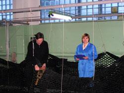 Finishing control of made trawl